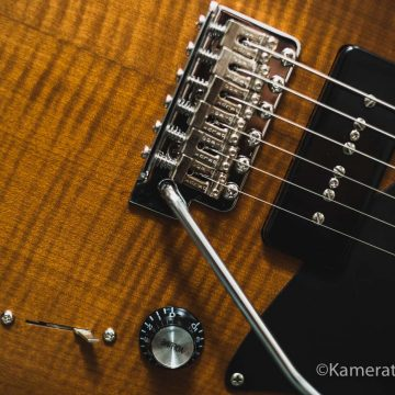 Autumn_Guitar_Selection_WM_20181012-57