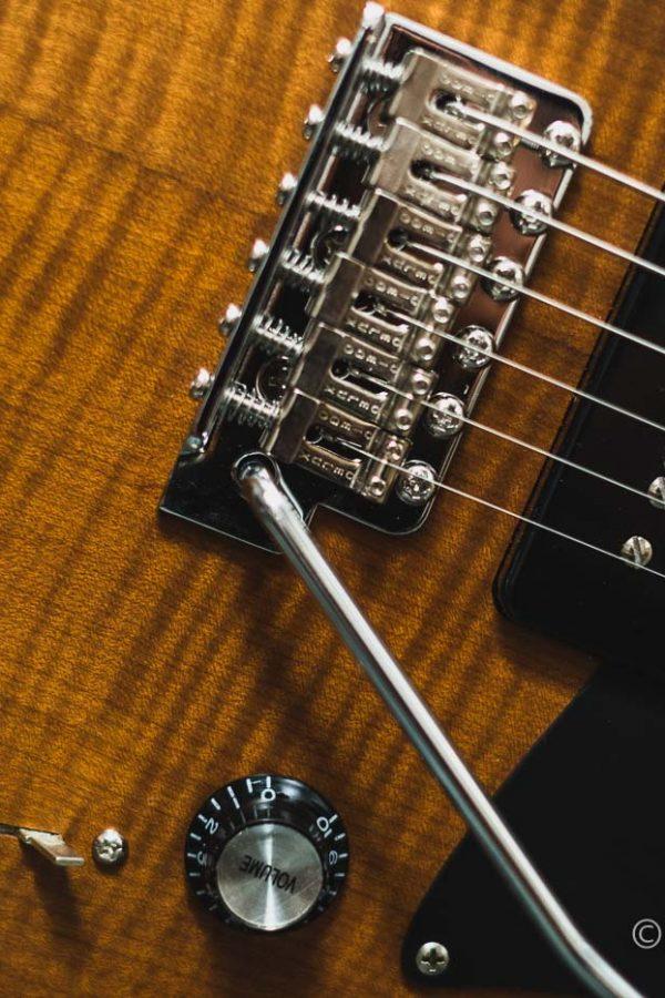 Autumn_Guitar_Selection_WM_20181012-57