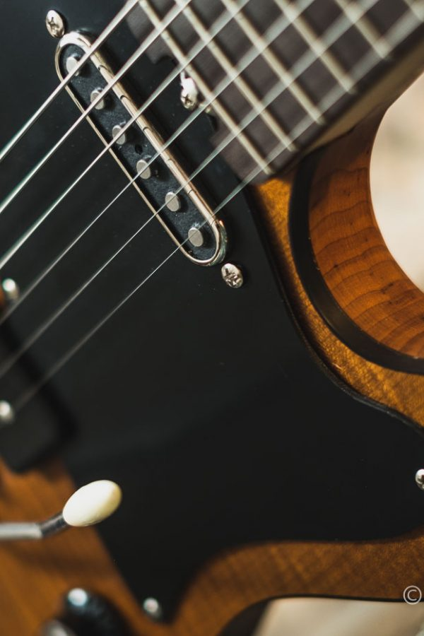 Autumn_Guitar_Selection_WM_20181012-58